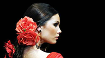 flamenco Barcelona, origin word flamenco, Spanish culture, Spanish flamenco, flamenco etymology, Barcelona show and drink, Barcelona show&drink, show&drink flamenco, flamenco show Barcelona, Palacio del Flamenco, tablao flamenco Barcelona